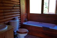 1bBathroom_pirates_creek_accommodation